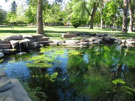stagno giardino stagno progettazione giardini laghetto giardino