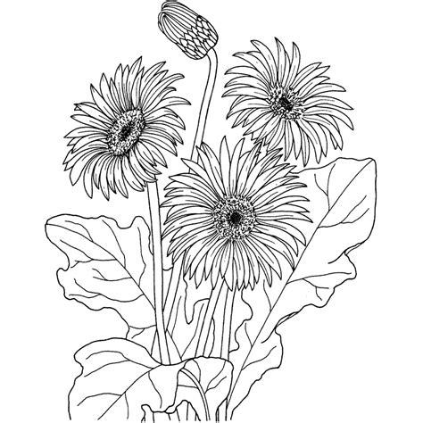 dibujos para pintar flores en tela imagui dibujos de flores para pintar en tela imagui