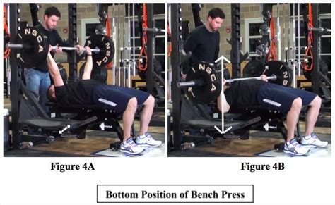 bottom position bench press how to barbell flat bench press for personal training