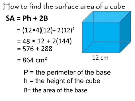 lashmaniacs us how to buy an area surface area of a