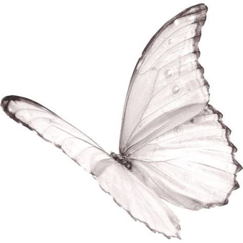 white butterfly tattoo hello dolly tattoos white butterfly