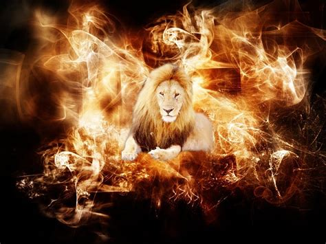 imagenes leones en 3d wallpaper fire wallpapers
