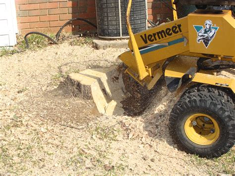 stump removal grinding in houston l dirtwirx inc