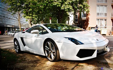 Lamborghini Free Lamborghini Cars Free Lamborghini Hd Wallpapers