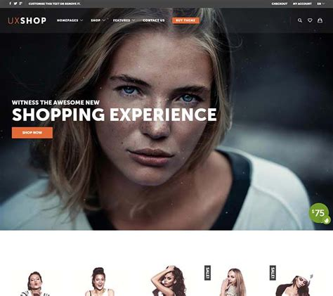 20 best wordpress shopping cart themes 2018 siteturner 20 best wordpress shopping cart themes 2018 siteturner