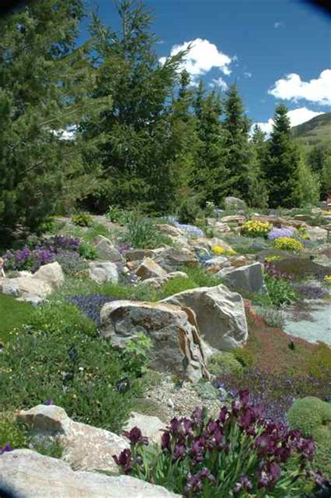 alpine rock garden vail summer enjoying the ford legacy amidst blooms