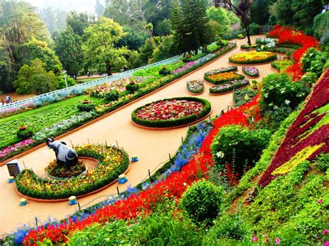 Ooty The Lost Paradise Diaries Of A Chronicler Flower Gardens In India