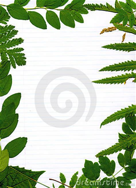border design for environment green leafy natural border stock photo image 2880260