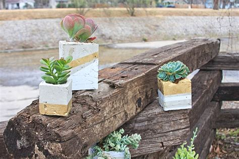 Cement Planters Diy by Diy Wedding Decorations For