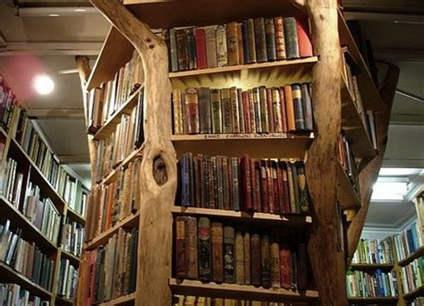 Bathroom Floor Design Ideas 5 unique bookshelves that are actually real trees