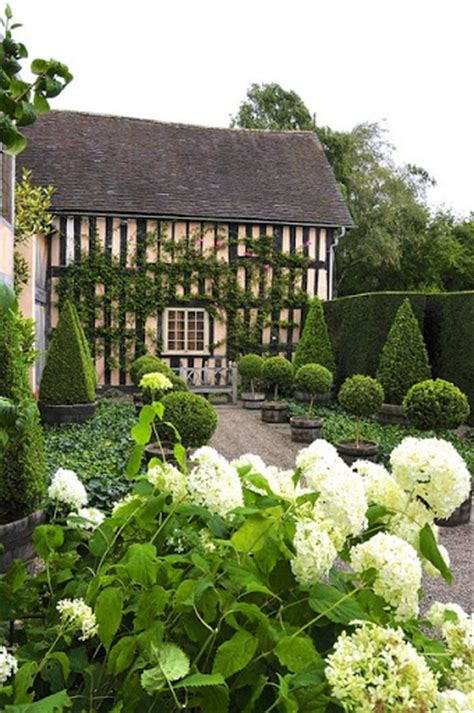 cottage garden box modern country style hydrangeas topiary and boxwood in