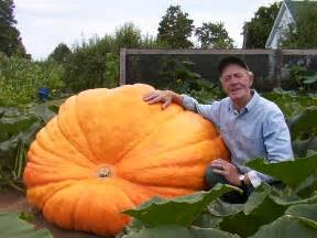 What County Is Winter Garden In - deck the holiday s growing giant pumpkins
