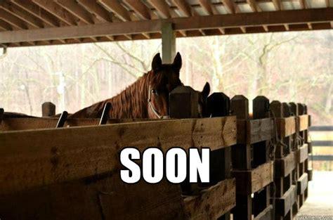 Soon Horse Meme - soon horse memes quickmeme