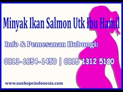 Vitamin Minyak Ikan Untuk Ibu 1450 hargamesinl0