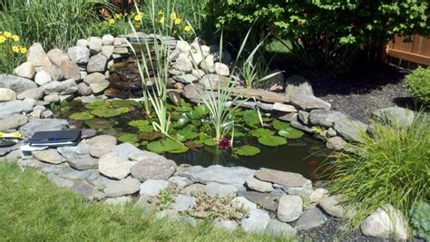 How Much Are Patio Stones by What Type Of Pond To Build Take A Look And Discover Their