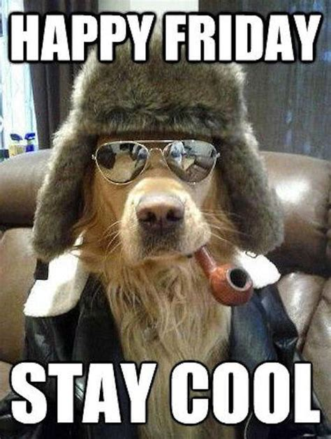 happy friday stay cool pictures   images  facebook tumblr pinterest  twitter
