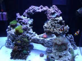 possible aquascape for the new cube fish