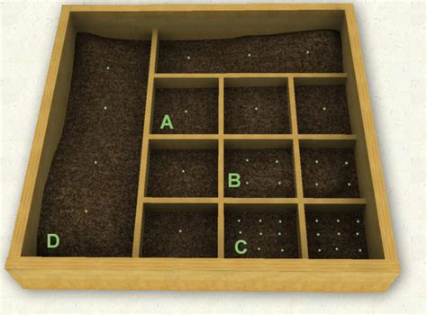 Square Foot Garden Layout Ideas Best 25 Square Foot Gardening Ideas On Pinterest I Square Foot Square Foot Garden Layout And