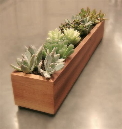 15 Natural And Handmade Living Succulent Decorations Succulent Planter Box
