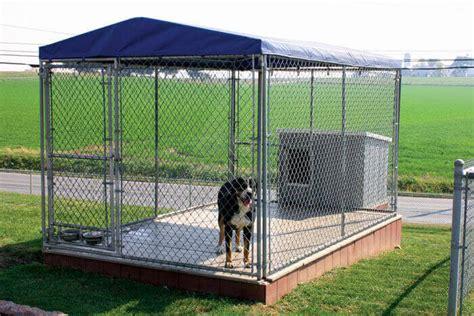 big kennel  dogs goldenacresdogscom