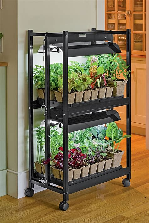 started growing  easy small vegetable garden ideas