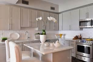 light taupe kitchen cabinets transitional kitchen
