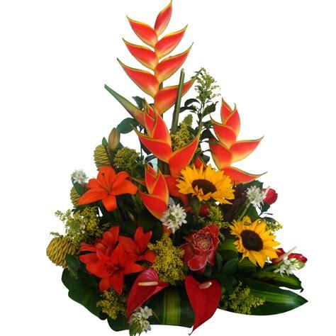arreglos de promociones promoci 243 n de arreglos florales a domicilio proactiva