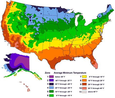 fruit zone map science usda hardiness zone map ornamental plant care