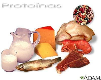 proteinas o protidos alumno cobach 6 grupo 259 nl 34 clasificacion de las