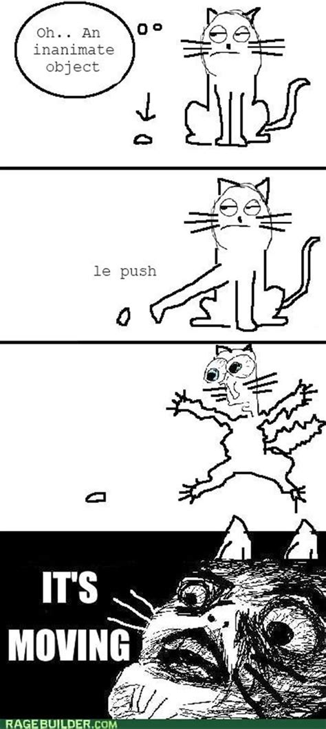 Funny Memes Comic - cat logic funny rage comics dump a day