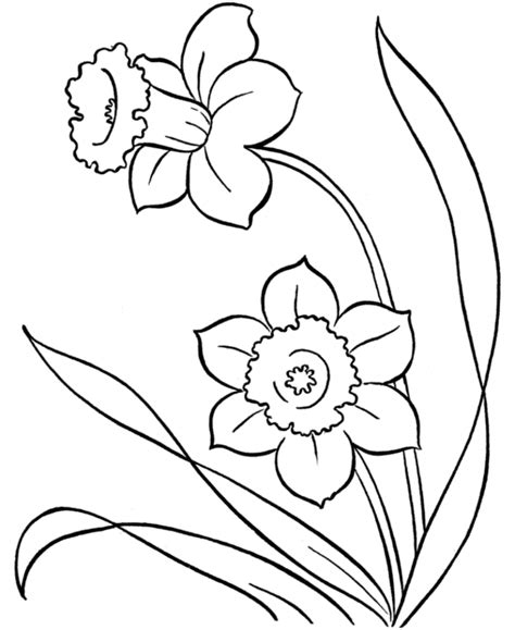 flower drawings for coloring free printable flower