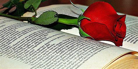 libro por una rosa un libro y una rosa mayormente com el mejor sitio para mayores de 50 a 241 os