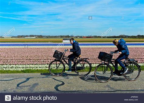Motorrad Fahren Holland by Holland Bicycle Land Stockfotos Holland Bicycle Land