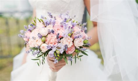 beginners guide  wedding flowers  exeter daily