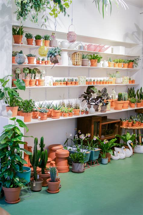 best plant store in amsterdam wildernis in amsterdam 183 happy interior