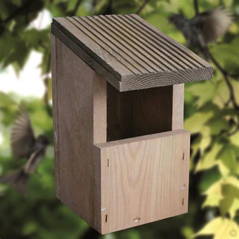 robin nesting box bird house buy online order yours now