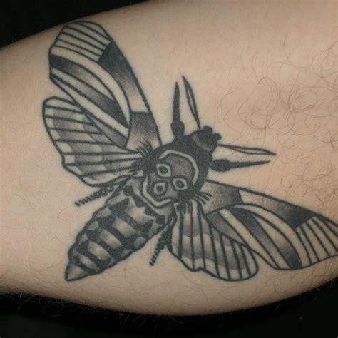 black and grey moth tattoo 65 beautiful moth tattoos