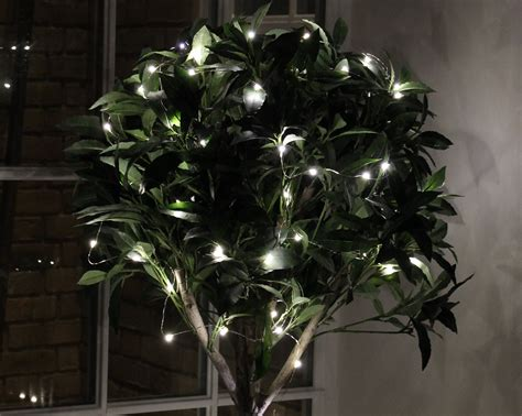 Get Creative Fairy Lights Part 1 Bright Ideas From Led Hut Lights Bushes