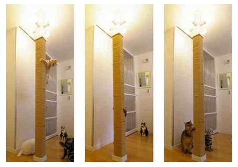 Floor To Ceiling Cat Post by
