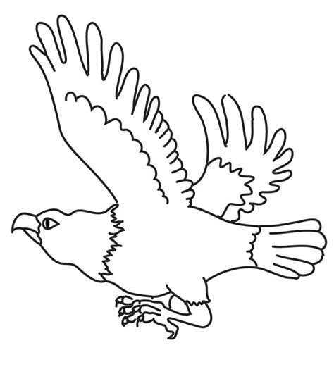 free coloring pages of drawings eagle