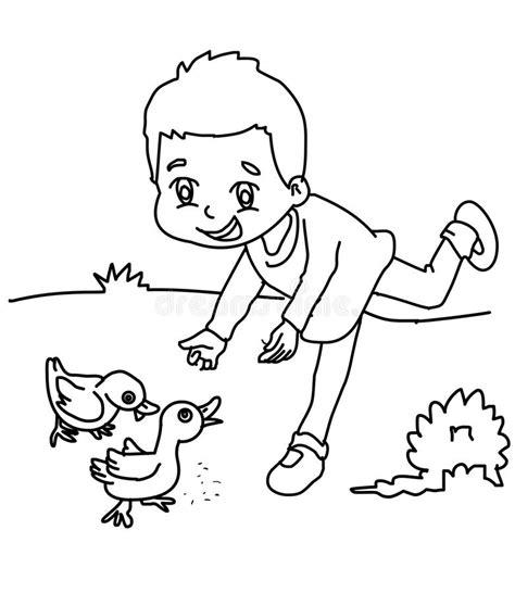 feeding ducks coloring page boy feeding ducks coloring page stock illustration
