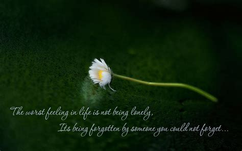 feeling lonely quotes quotes feeling lonely and sad quotesgram