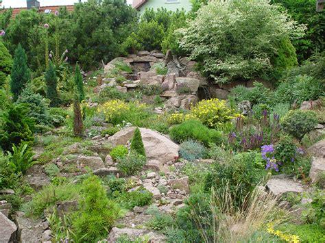der steingarten steine und pflanzen als blickfang im