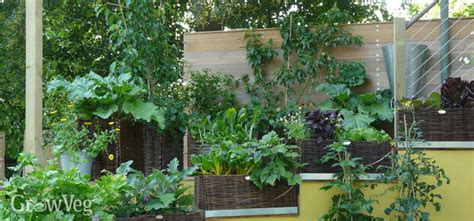 small home vegetable garden ideas ideas for small gardens growing vegetables vertically