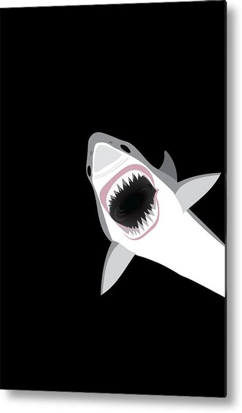 baby shark metal great white shark metal print by antique images