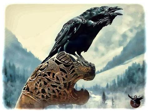 the viking post raven on a drakkars head