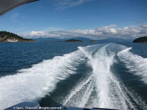 speed boat wake boat wake bing images