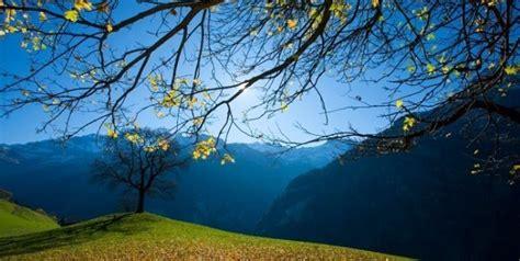 imagenes bellas naturaleza 24 bellas palabras que describen la naturaleza y los