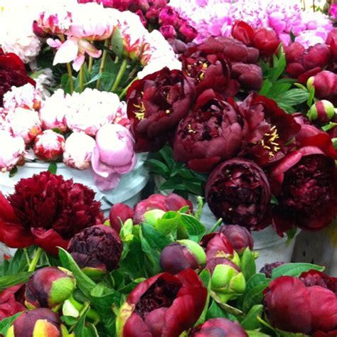 wine colored flowers burgundy wedding jars