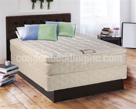 queen size pillow top bed bedroom also platform bed with box spring tomorrows dream